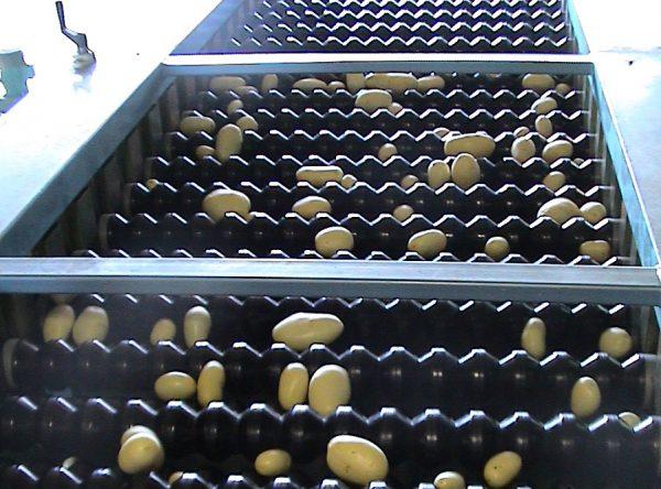calibratrice-a-rulli-patate.jpg