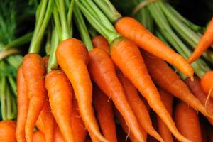 Lavorazione carote