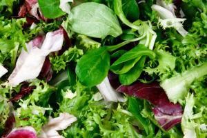 Lavorazione insalata