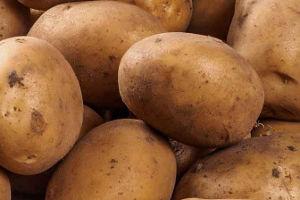 Lavorazione patate
