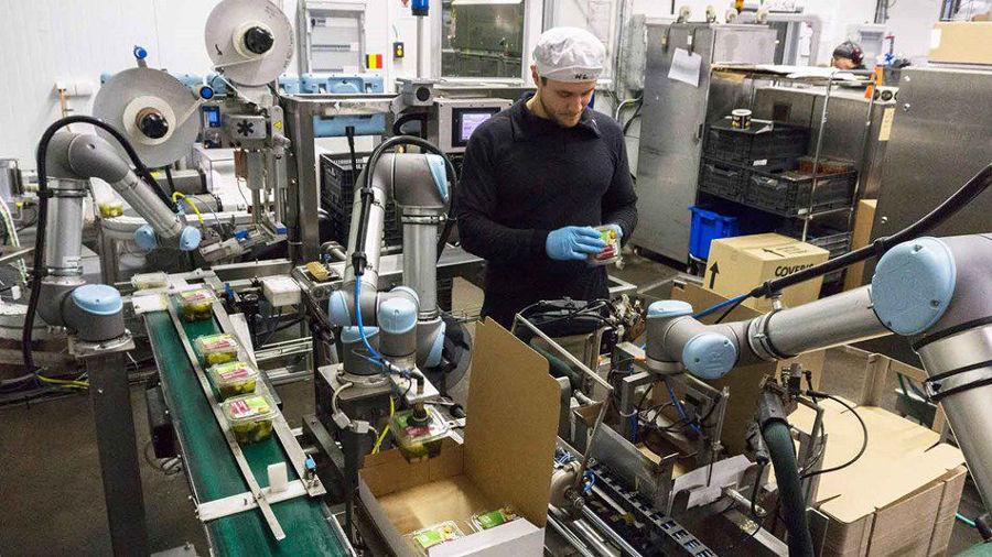 Automazione industriale per magazzini di lavorazione ortofrutticola